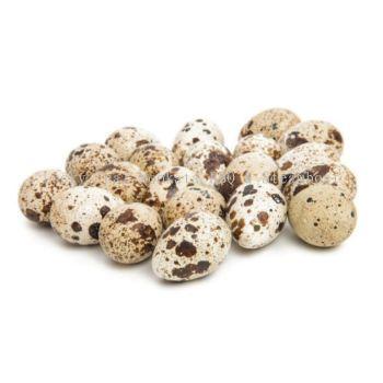 ���ȵ� Quail Eggs