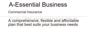 A-Essential Business