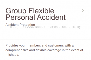 Group Flexible Personal Accident