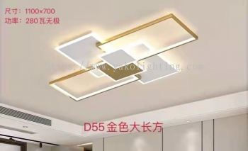 LS-D55(1100 X 700)