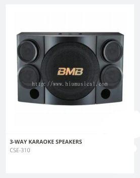 BMB CSE 310 Karaoke Speaker