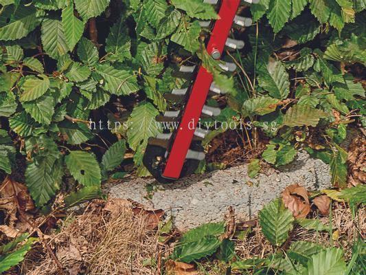 DIYTOOLS.SG : EINHELL CORDLESS HEDGE TRIMMER MODEL: ARCURRA18/55