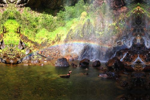 Rainbow Waterfall Sungai Lembing